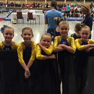 Precision Gymnasts Sweep Regional Meet